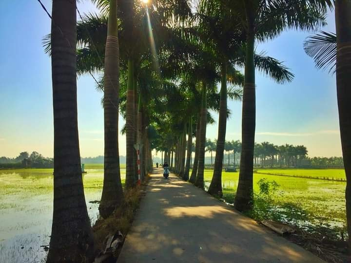 15 best things to do in VIETNAM